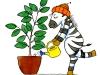 Pflanzendienst