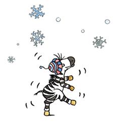 Zebra_Winter