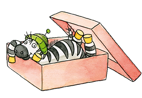 Zebrafanclub Zebra Schachtel