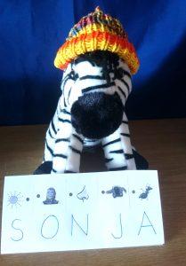 Zebra rapt, Zebra DAZ Heft A